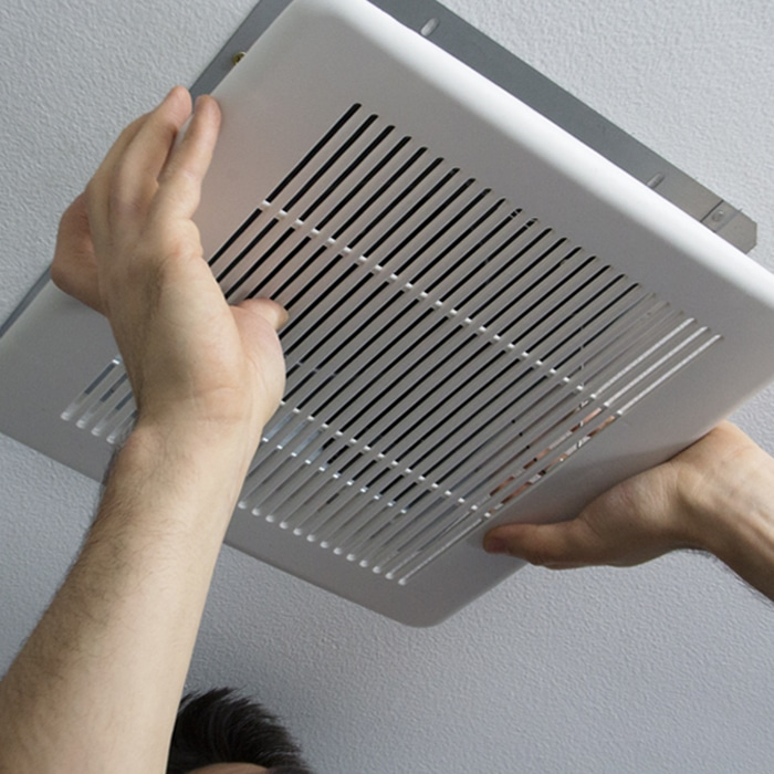 Mold In Ac Vents >> Mold in Your HVAC System | Bertie Heating & Air Conditioning
